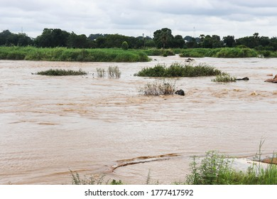 This image features a flowing river with dirty water with a cloudy sky.