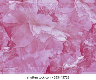 """This image of """"floating"""" Peonies is graceful and elegant, and its transparency reminds me of the beauty and transience of life."""