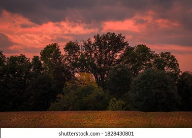 This image shows a glowing pink sky as the sun sets over secluded, tree lined fields.