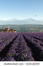 This image shows a lavender field with a little village in the evening