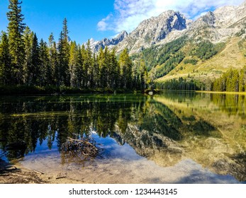 This is Leigh Lake in Grand Teton National Park, Wyoming. The Teton Range, forest land, and sky, is reflected upon the lake. The shoreline appears muddy, and a lone dead branch is in the water nearby.
