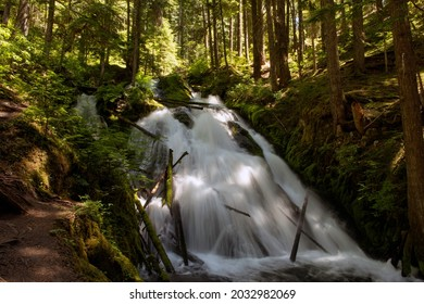This is Little Zigzag Falls, which is on the Little Zigzag Creek on the slopes of Mt. Hood, Oregon.  Taken in Summer.