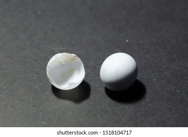 this is lizard eggs. its is white color
