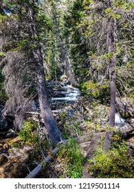 This is the Lower Cascades Canyon Trail in the Jenny Lake area of Grand Teton National Park in Wyoming. On the way to Hidden Falls, there are numerous cascade views to be seen.
