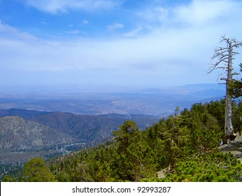 This is from Mt. San Antonio in California.