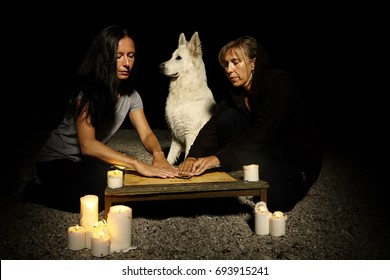 This night is perfect for ghost summoning under dog protection