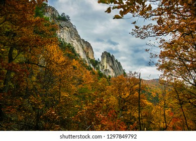 This is a part of the Seneca Rocks National Recreational Area in the Monongahela National Forest in West Virginia. This is a famous and challenging spot for climbers.