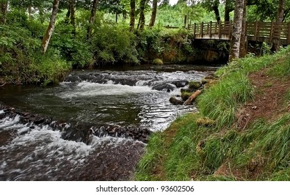 This peaceful stock image invites someone to cross over on the small footbridge over this creek, to cool off on a hot summer day in the wooded cool landscape.