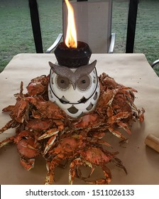 In this photo Maryland Chesapeake Bay Crabs have been placed on a table before they are eaten.