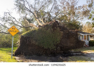 This photo of Wilmington North Carolina shows destruction by Hurricane Florence in September of 2018.  This is a massive oak tree that fell on a small home.