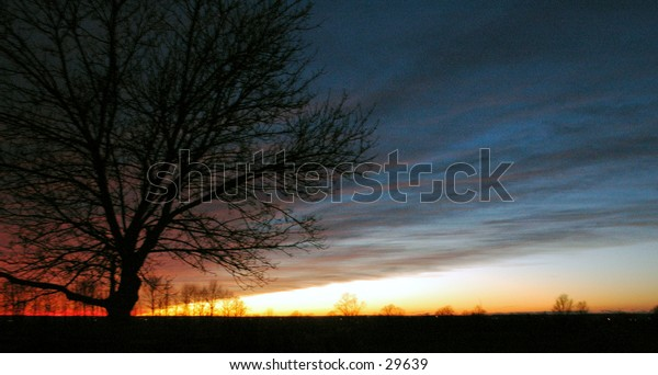 This photograph is a sunset I captured last night (November 11, 2004).  I love the way the color streaks thru the sky!!