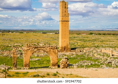This is the picture of the World's first university, Harran University. The remainings of the university is located in Sanliurfa, Turkey. The shot was taken cloudy day. tower and some gates are exist