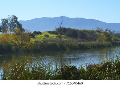This is from Prado Regional Park in California.