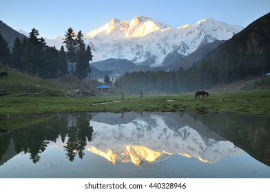 This is reflection of nanga parbat mountain before sunrise at fairy meadows ,north Pakistan