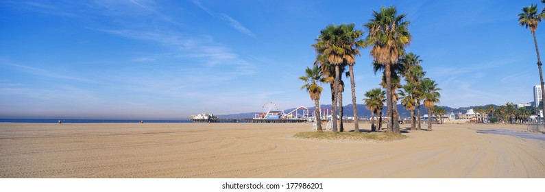 This is the Santa Monica Beach and pier with its amusement park. There are palm trees in the foreground.