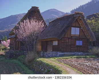 This is Shirakawago the oldest village of Japan and traditional house of  Japanese People.