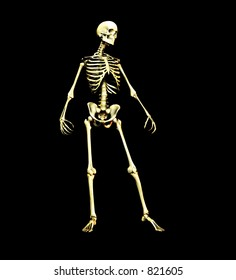 This is an skeleton in a standing pose.