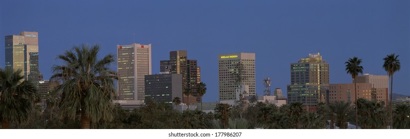 This is the skyline at dusk with palm trees surrounding the city.
