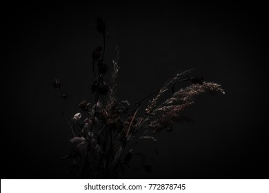 A  this still life on a black background is very reminiscent of the fruit baskets of the famous painter Caravaggio.