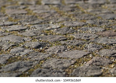 This stone pavement closeup is a little part of walks and places in an urban park. With joints, split and a little bit of grass. 3