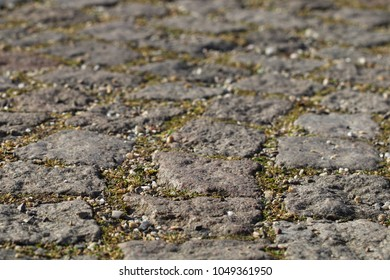 This stone pavement closeup is a little part of walks and places in an urban park. With joints, split and a little bit of grass. 2