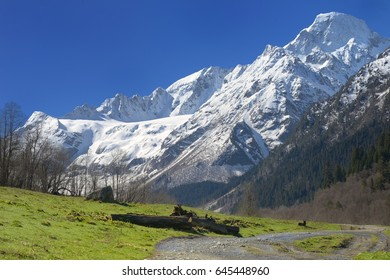 This is sunny landscape in Caucasus mountains in spring
