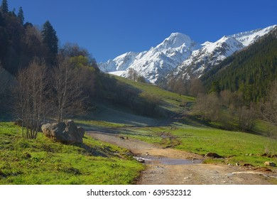 This is sunny morning in Caucasus mountains in spring
