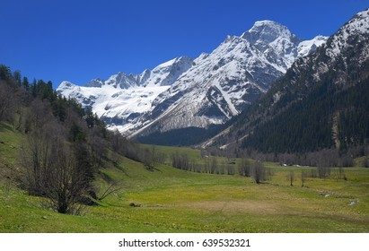 This is sunny view in Caucasus mountains in spring