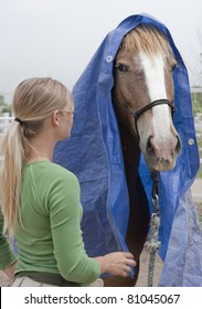 This trainer works with a Mustang horse that less than 90 days earlier had been running wild in Nevada. The trainer is working to desensitize the horse from items that could scare him.
