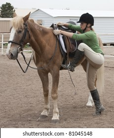 This trainer works with a Mustang horse that less than 90 days earlier had been running wild in Nevada.