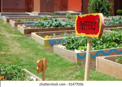 This vacant lot in an inner city neighborhood has been turned into a community garden