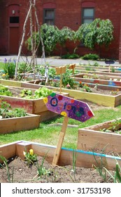This vacant lot in an inner-city neighborhood has been transformed into a community garden