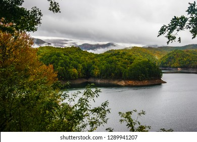 This is a view of beautiful Fontana Lake in Autumn, surrounded by the Nantahala NF in southern NC., near Bryson City. Many coves are seen on this winding shoreline. Low clouds blanket the distant mts.
