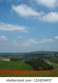 This view is from Bury Hill near Arundel in West Sussex.  Poppies are in bloom on Bury Hill and the view stretches across the Arun Valley towards the village of Amberley,  Kithurst Hill and the Downs.