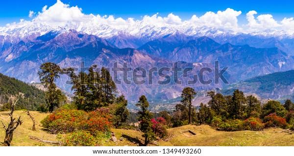This is the view of Himalayas Panchchuli peaks & alpine landscape from Khalia top trek trail at Munsiyari. Khalia top is at an altitude of 3500m himalayan region of Kumaon, Uttarakhand, India.