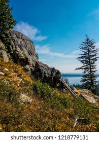 This is a view of Jenny Lake seen from Inspiration Point in Grand Teton National Park in Wyoming. A lone evergreen tree kind of obstructs this view.