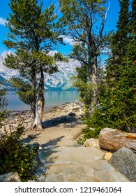 This is a view of Jenny Lake with the Tetons in the distance, across the lake. Jenny Lake is located in the Grand Teton National Park in Wyoming.