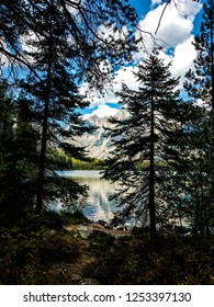This is a view of Leigh Lake through the forest, from Leigh Lake Trail in Grand Teton NP in Wyoming. The beautiful Teton peaks can be seen across the lake.