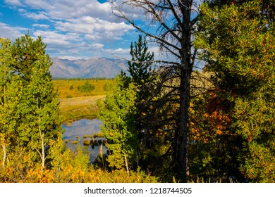 This is a view of the riverin the foreground and the Teton peaks in the distance, in the Grand Teton National Park in Wyoming.