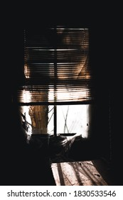 This is a view of thick cobwebs that are clinging to a derelict window and blinds inside a long-abandoned house in Virginia.