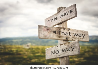 This way, that way, no way sign board. Nature, adventure, message, text, quote concept.