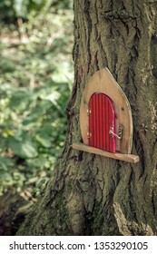 Is this where the fairy lives? Door in tree trunk