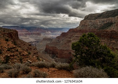This is Yuma Point, off the Boucher Trail in the S Rim of Grand Canyon NP in AZ. A lone tree stands on the right foreground, cliffs are on either side, and north rim formations are in background.
