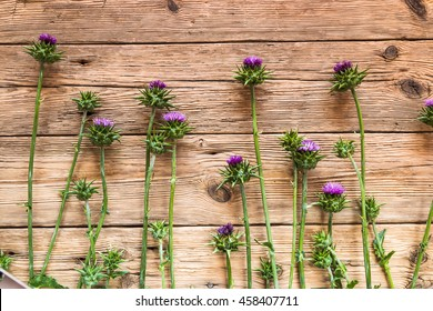 Thistles on a wooden background.