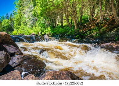 Thompson Water Rapids Conservation Area Armour Ontario Canada in Summer