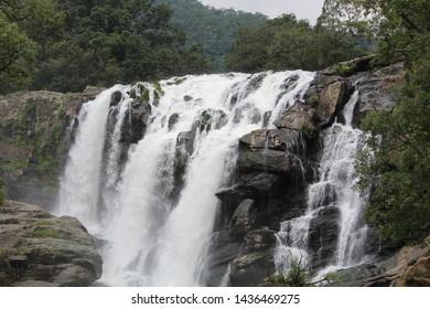 Chinnar Wildlife Sanctuary Images, Stock Photos & Vectors