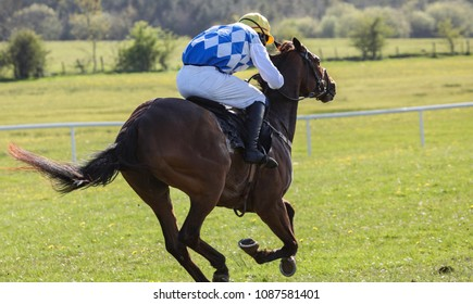 Thoroughbred Race Horse And Jockey Racing Towards The Finish Line