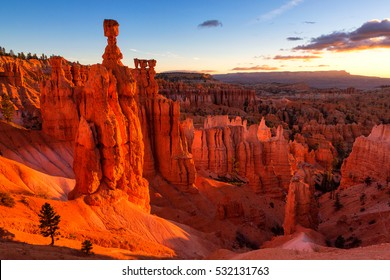 Thor's Hammer in Bryce Canyon National Park in Utah, USA