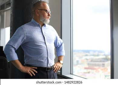Thoughtful mature business man in a corporate suit looking away while standing near the window.