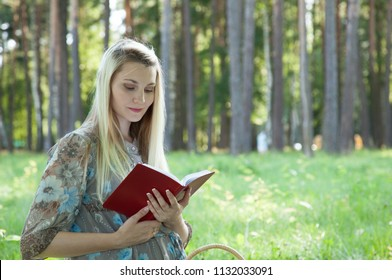 Thoughtful pregnant young woman sitting with a book on a green summer meadow